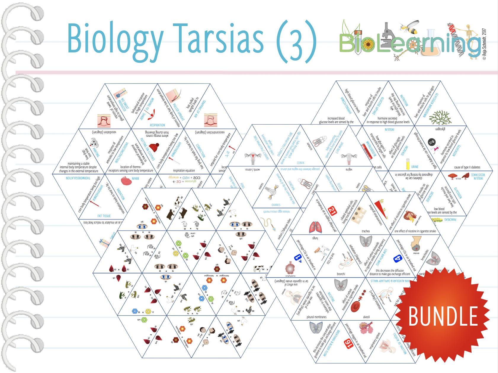 10x Biology Tarsia Games Bundle (3) - (KS3/4)