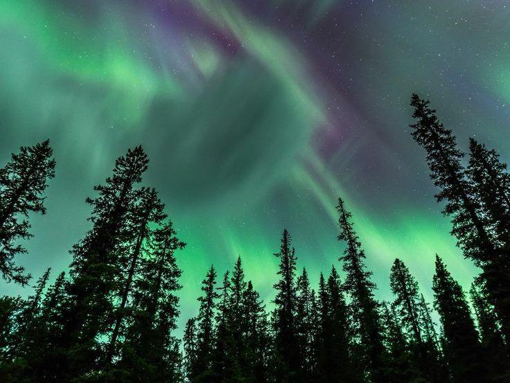 Numinous Northern lights! (and Svalbard)