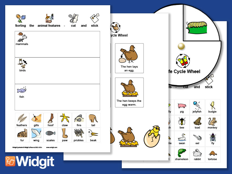 Animal Science - Activities with Widgit Symbols