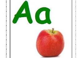 Alphabet Photo Flash Cards