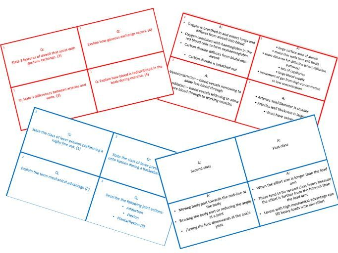 AQA GCSE PE Revision Question Cards - All units
