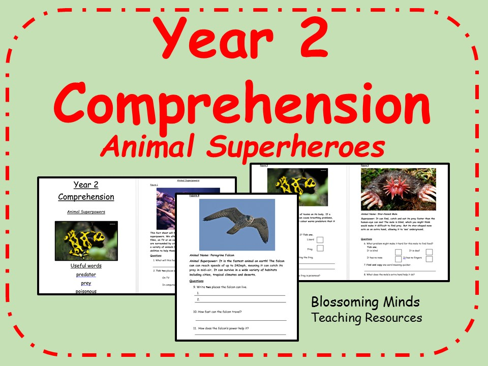Year 2 SATs style comprehension non-fiction