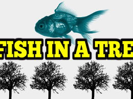 Fish In A Tree Novel Study Full Unit