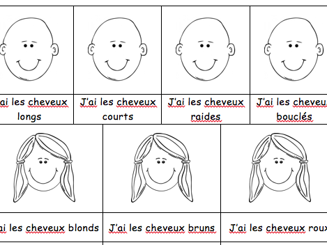 French Physical Description : Worksheet