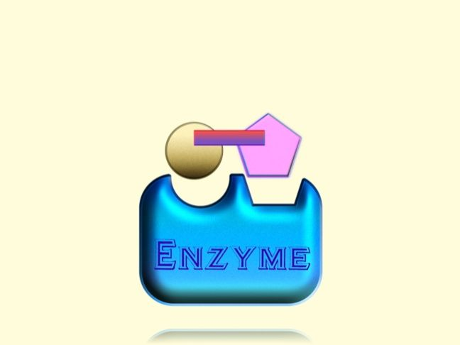 Lock and key mechanism of enzyme action