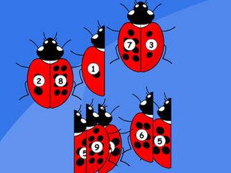 Ladybird Spot Totals