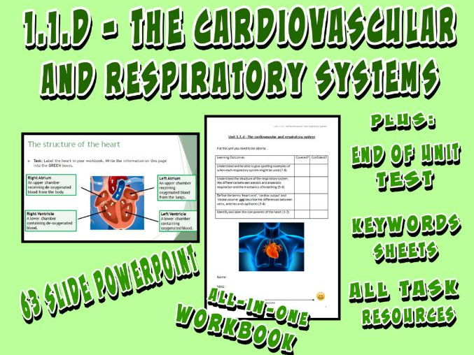 OCR GCSE PE 9-1 (2016) 1.1.d - The Cardiovascular and Respiratory System - Unit of Work