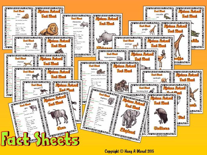 African Animals Fact Sheets