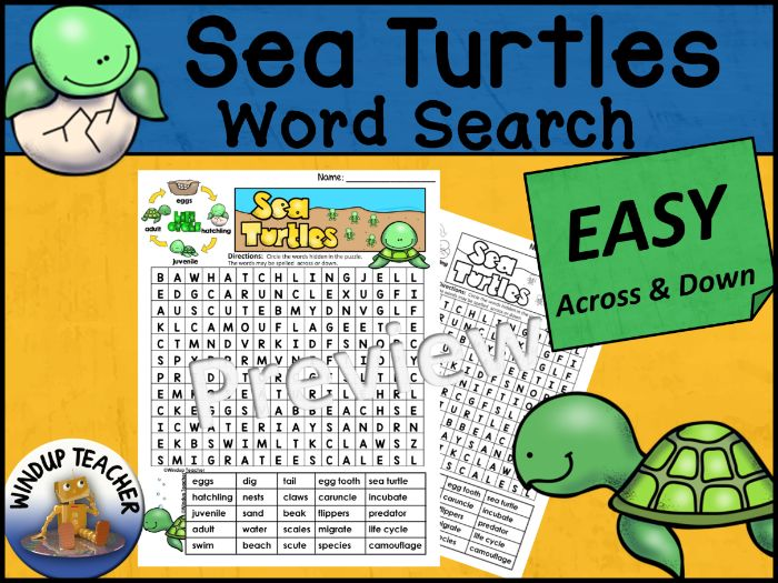 Sea Turtle Life Cycle Word Search EASY Puzzle