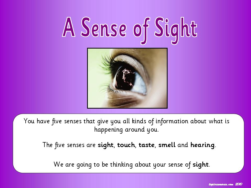 A Sense of Sight Topic Pack
