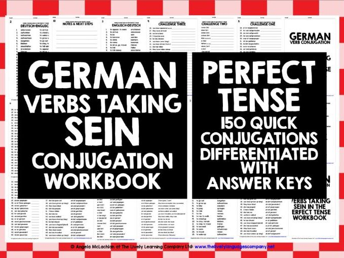 GERMAN VERBS PERFECT TENSE WITH SEIN
