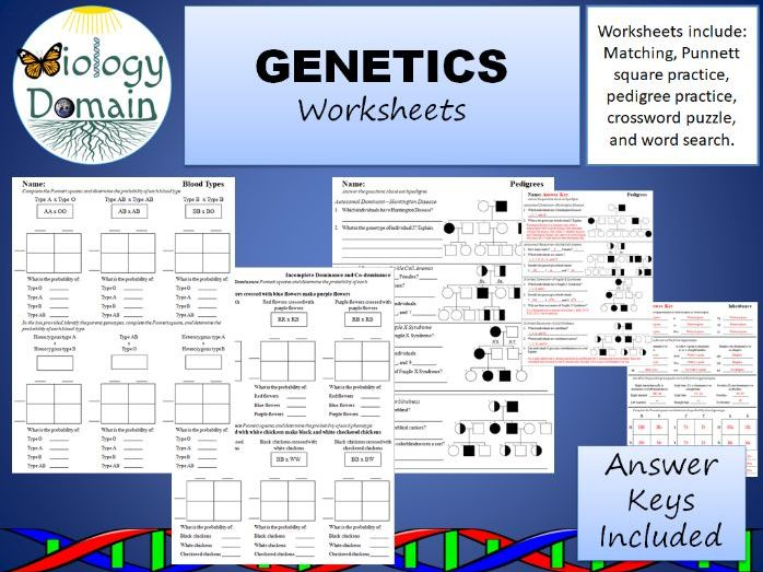 Genetics and Inheritance Worksheets