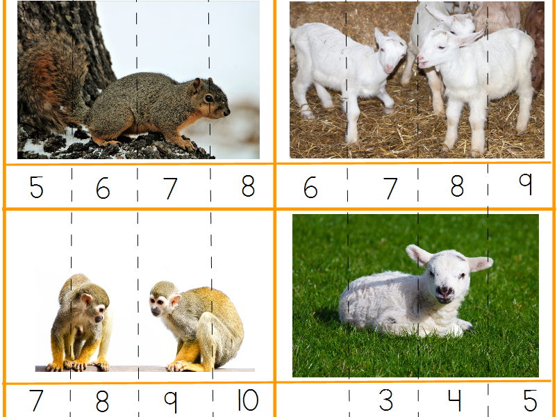 Real Animals Number Puzzles
