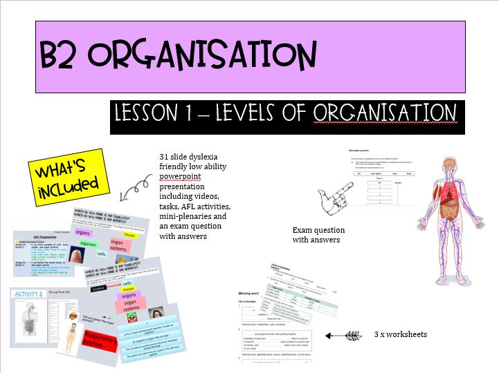 NEW AQA B2 Organisation lesson 1 - LA