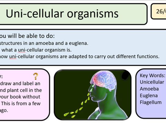New Activate AQA 1 Organisms whole unit 9 lessons KS3