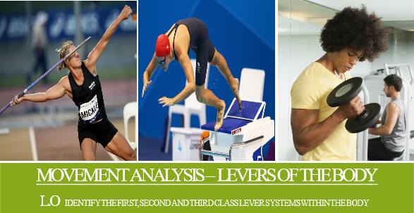 GCSE PE AQA  (9-1) Movement Analysis