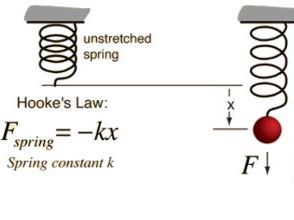 IGCSE Hooke's Law/Spring constant practical investigation - Forces and motion