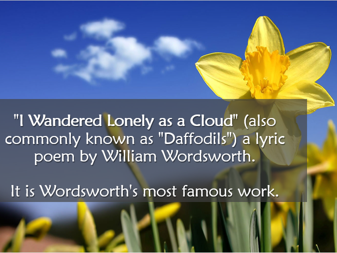 daffodils poem theme william wordsworth I wandered lonely as a cloud that floats on high o'er vales and hills, when all at  once i saw a crowd, a host of golden daffodils beside the.