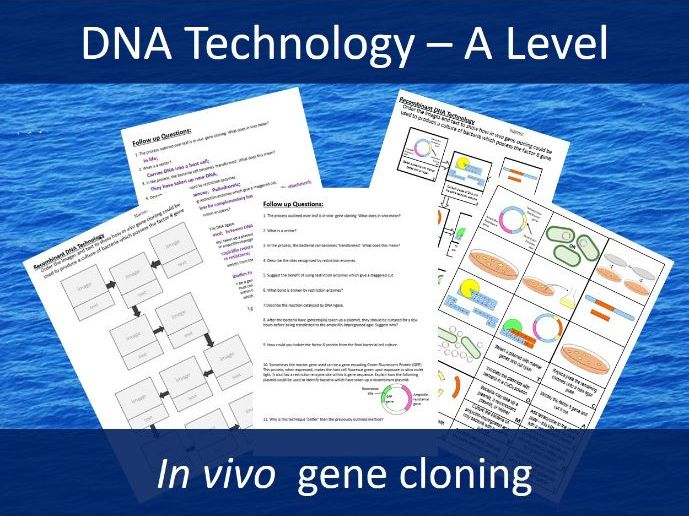 in vivo gene cloning cut and stick and questions - A level - DNA technology