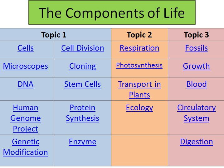 B2 Comprehensive Revision PowerPoints Edexcel