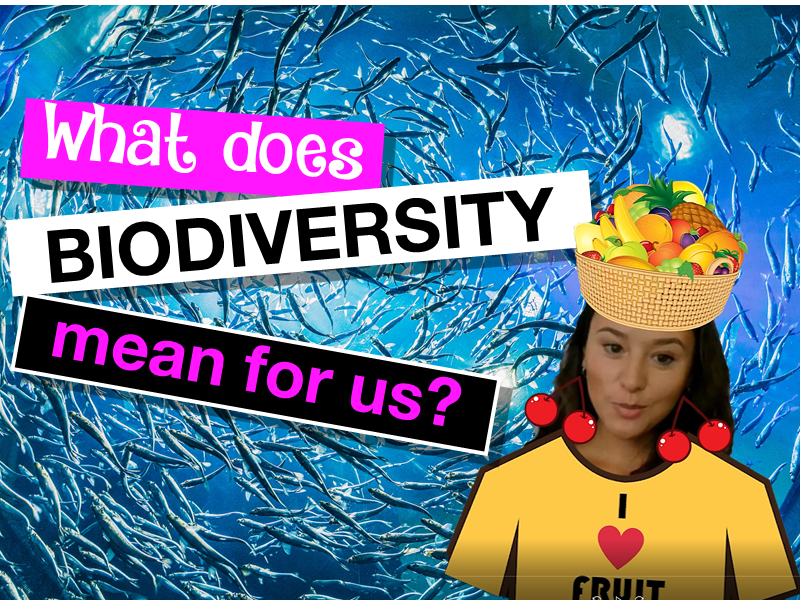 What does biodiversity mean for us?
