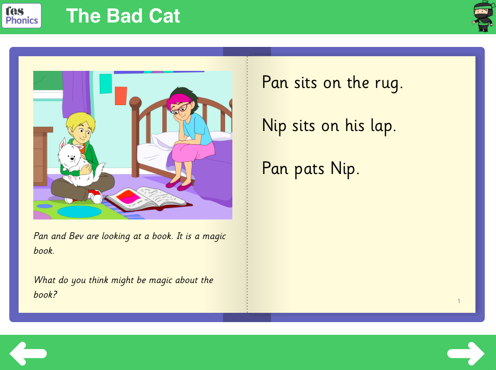The Bad Cat  Reading Book - Phase 2