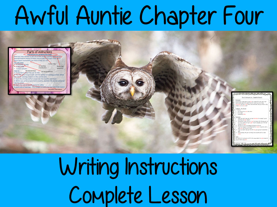 Writing Instructions Complete English Lesson on Awful Auntie