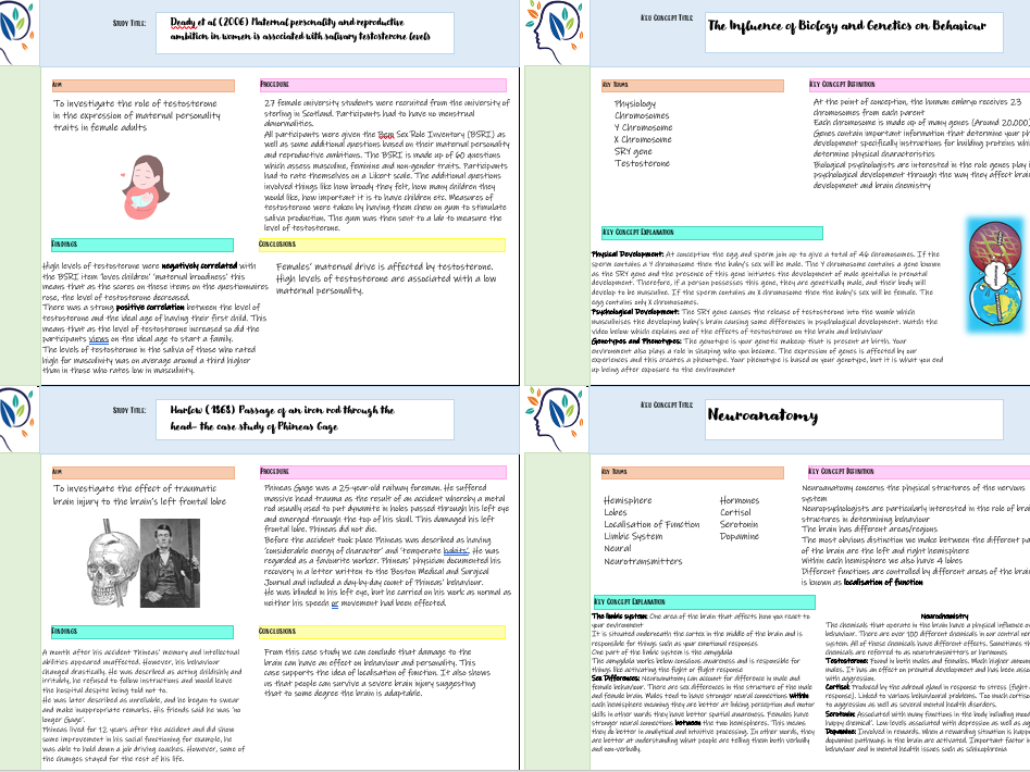 BTEC Applied Psychology Biological Approach Flashcards