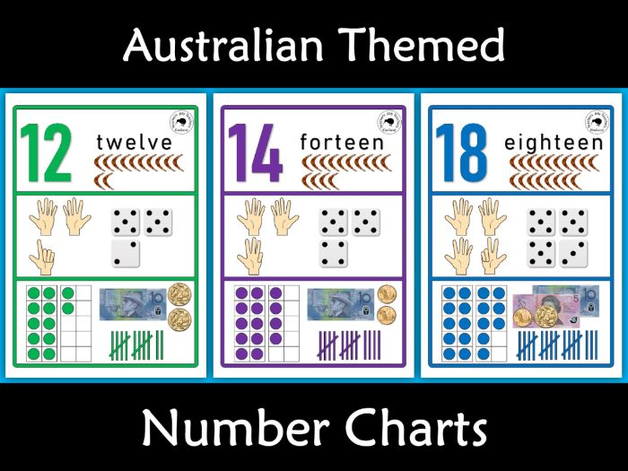 Australian Themed Number Posters 1-20 -Word, Ten Frame, Tally Marks, Money