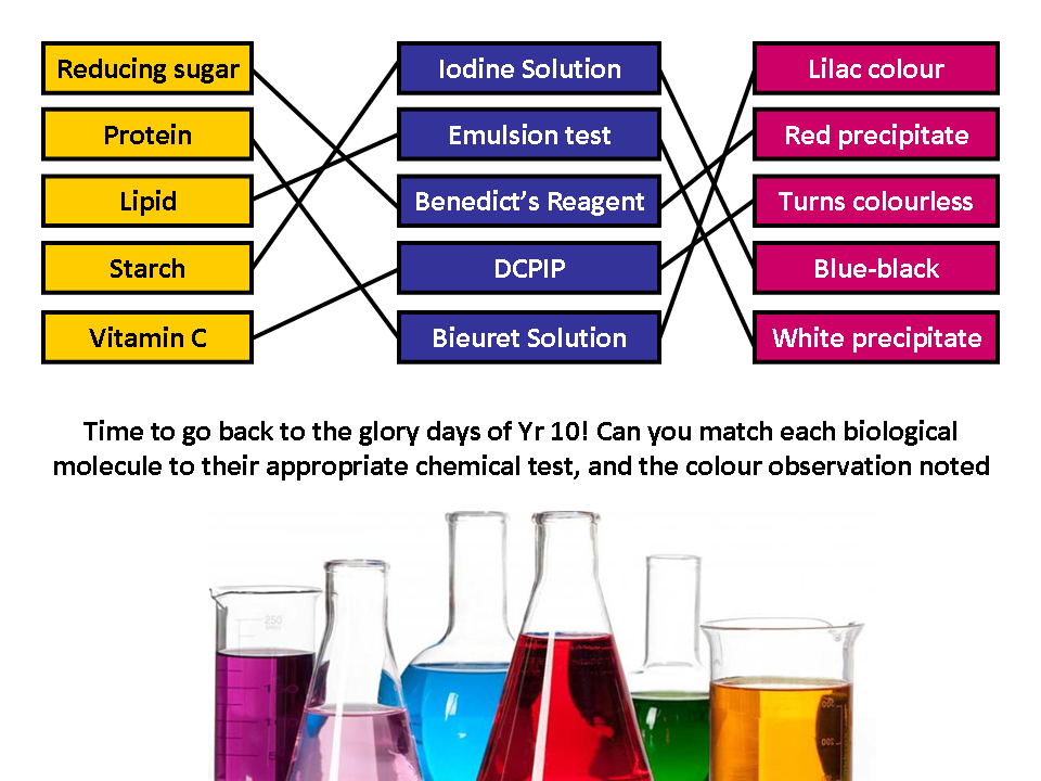 Biological Molecules - A complete set of resources for AQA AS/A-Level Biology