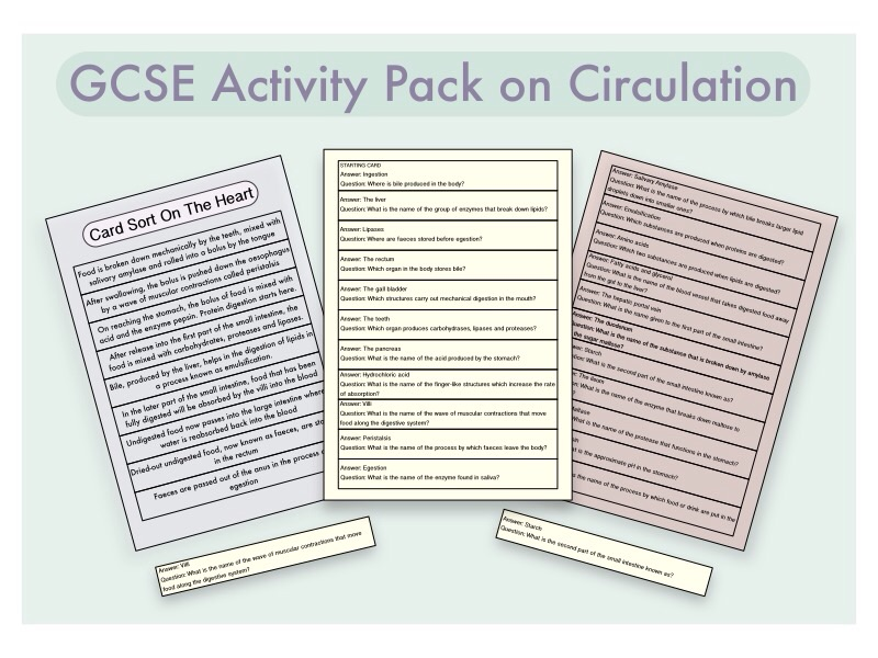 GCSE Pupil-Led Activity Pack on the Heart and Circulation