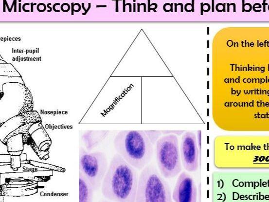AQA Biology Trilogy (B1) Quick Formative Assessments or Homework tasks