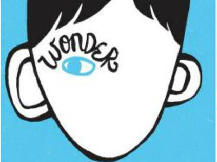 Wonder- R.J. Palacio- Language analysis