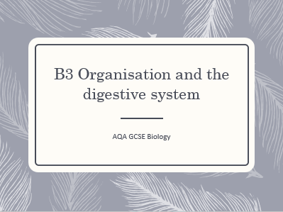 AQA GCSE Biology (9-1) B3 Organisation and the digestive system - ALL LESSONS