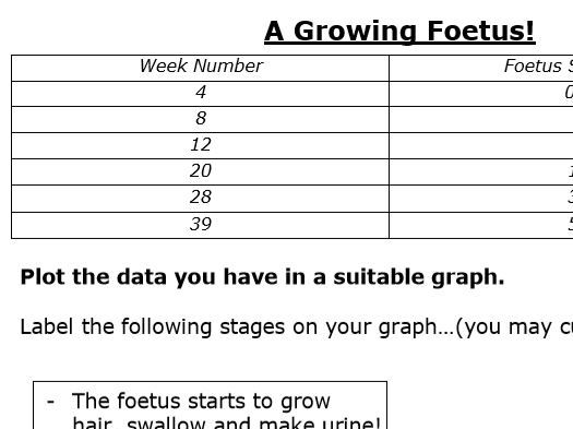 Growth of a Foetus (Graph Plotting Activity) - KS3 Reproduction/Skills