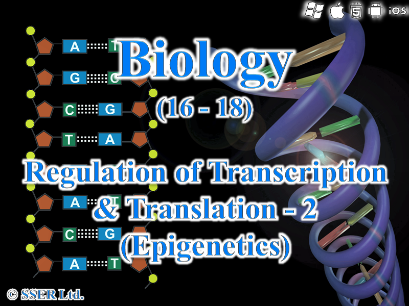 3.8.2.2 Regulation of Transcription & Translation - 2  (Epigenetics)