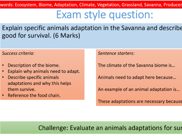 Geography Lesson- Plant and Animal Adaptations in the Savanna biome- ecosystems