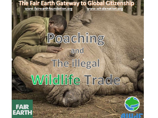 Poaching & Wildlife Trade : Fair Earth Resources