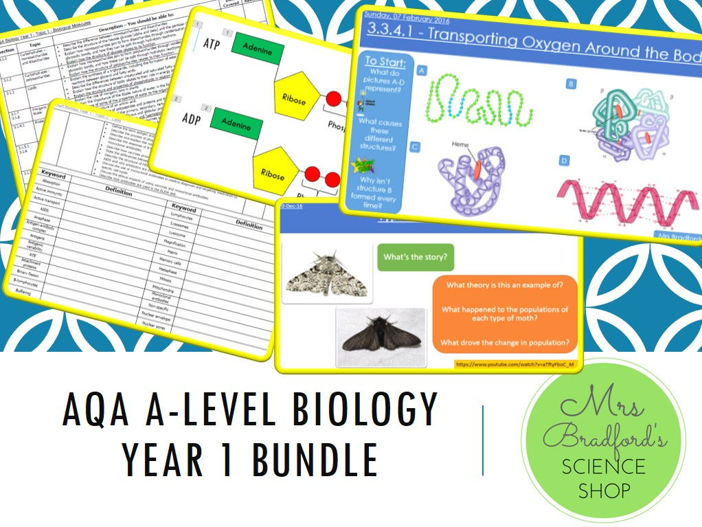 A-Level Biology Year 1 and Year 2