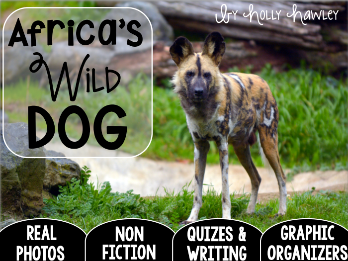 African WILD DOG-A Research Project- US Version