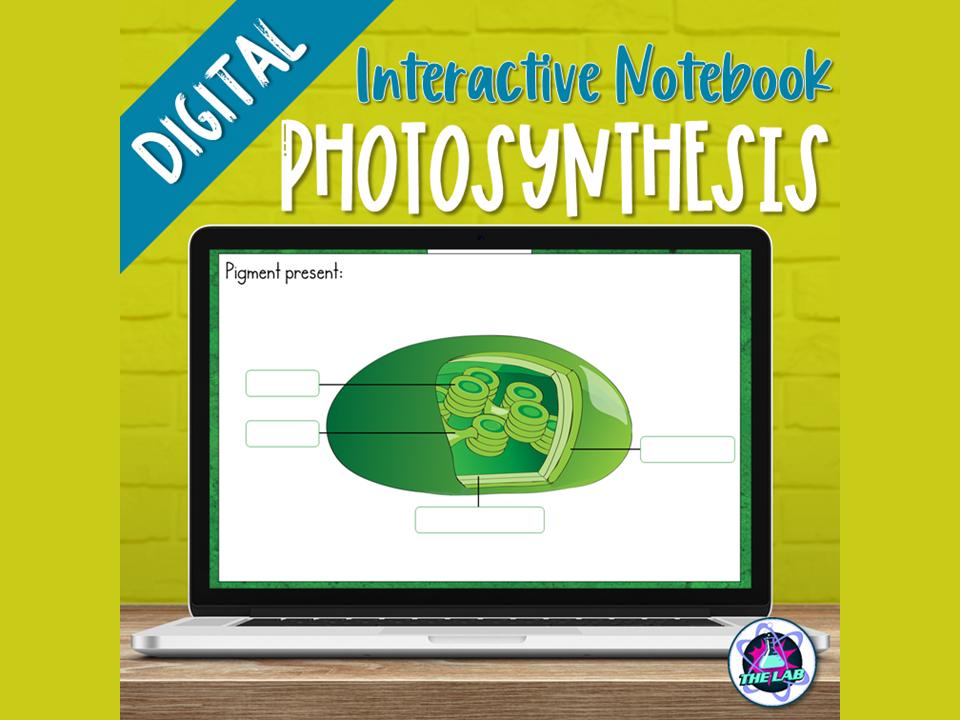Photosynthesis Digital Interactive Notebook