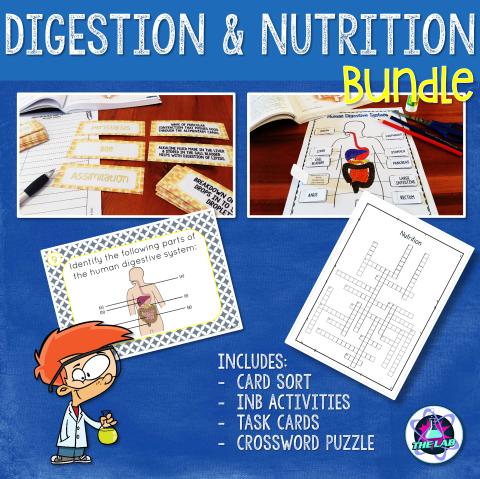 Digestion & Nutrition Bundle
