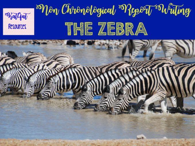 Zebras - Non Chronological Report Writing