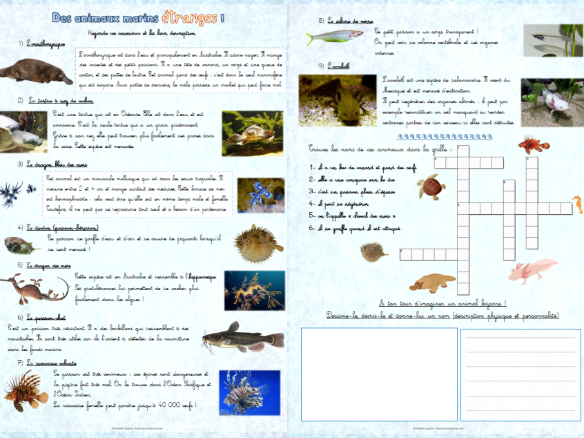 [French] Reading & crossword: underwater creatures