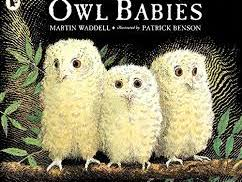 Owl Babies Talk for Writing unit of work for Year 1