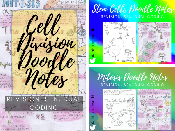 Cell Division Science Doodle Notes