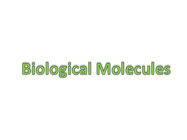 Biolgical Molecules