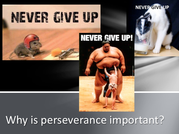Assembly on Perseverance