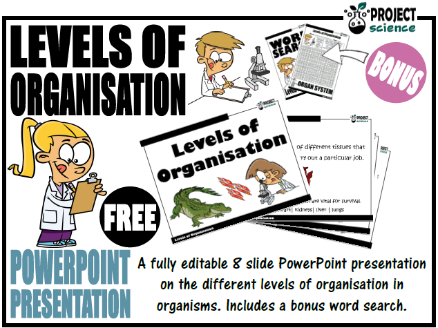 Levels of Organisation PowerPoint