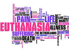 Presentation on Euthanasia (A Level OCR Religious Studies)